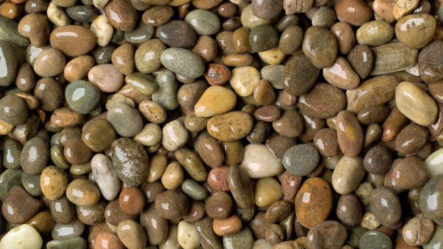 Portland Pebbles