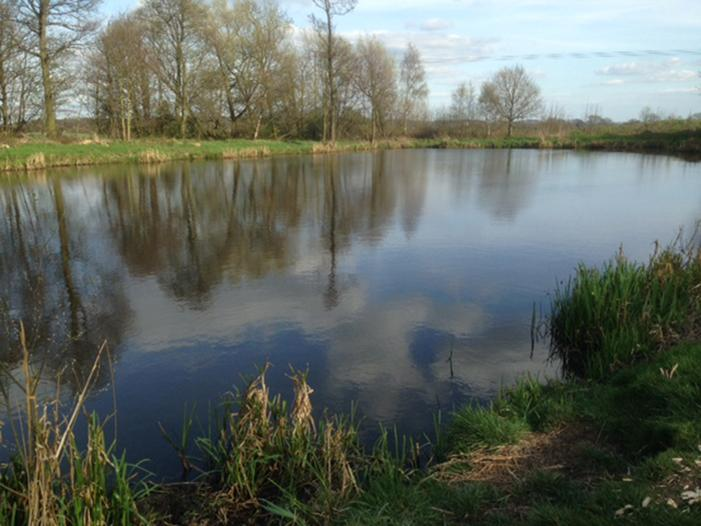 Fishing Lake West Bretton