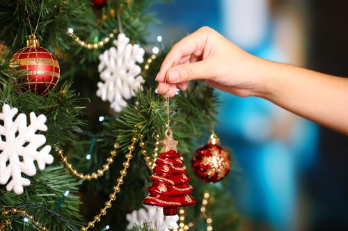 Pining for a Real Christmas Tree?