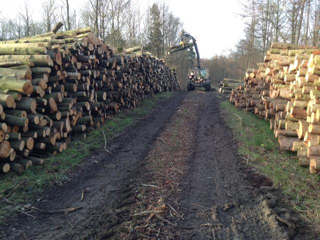 firewood deliveries 2014.jpj