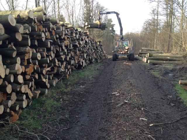 firewood deliveries b 2015.jpg
