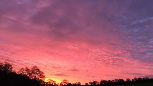 Red sky in the morning, shepherd's warning!