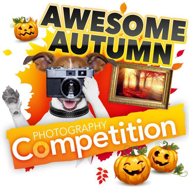 Autumn Photography Competition