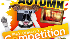 And the Winner of the Autumn Photography Competition is….