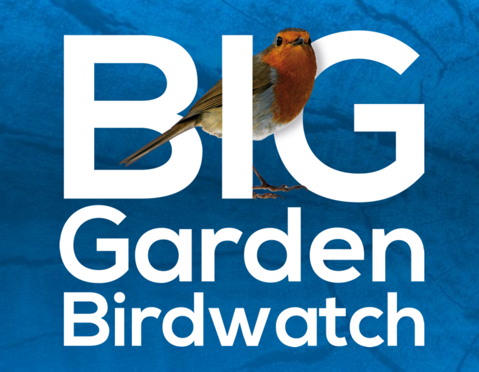 The RSPB Big Garden Birdwatch Weekend - Earnshaws