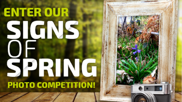 'Signs of Spring' Photo Competition!