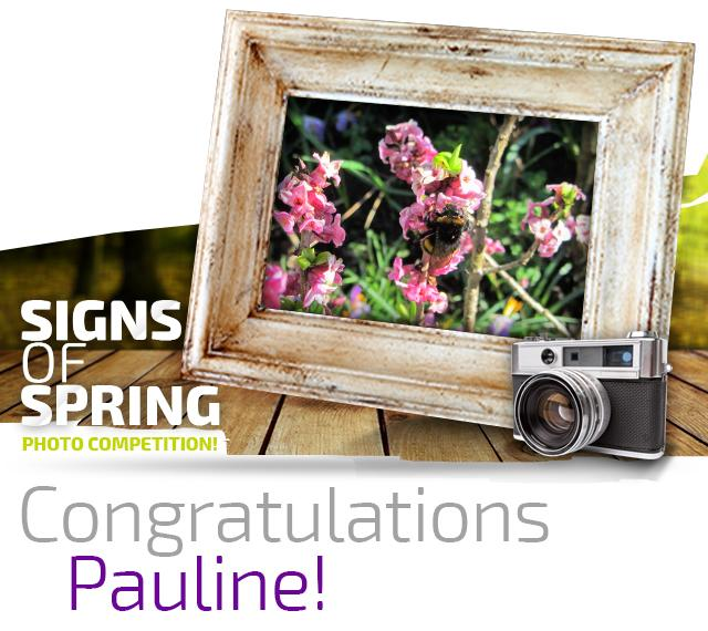 Signs of Spring Winner