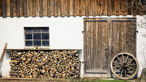 Firewood – Buy n' Dry, Ready for Winter
