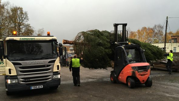 Xmas Trees at Earnshaws