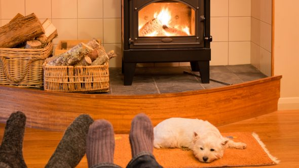Love a wood-burning stove? You will love our firewood and logs!