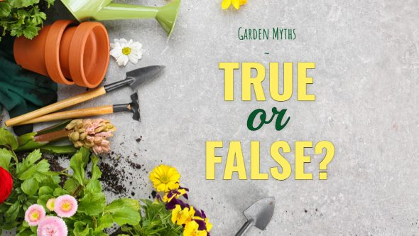 True or False – Gardening Myths!