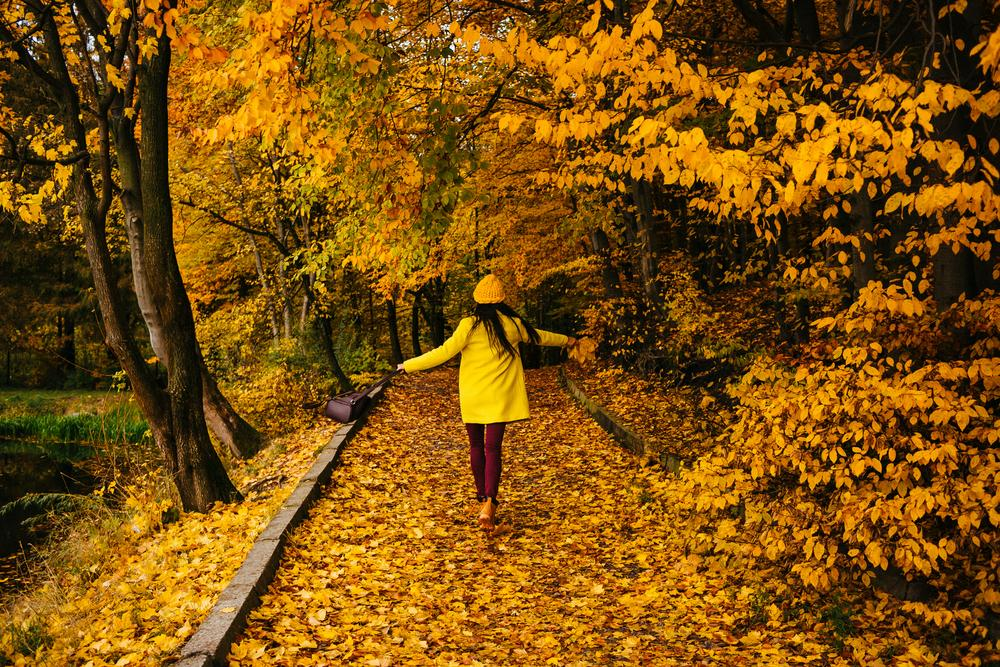 Lady walking down a path in autumn