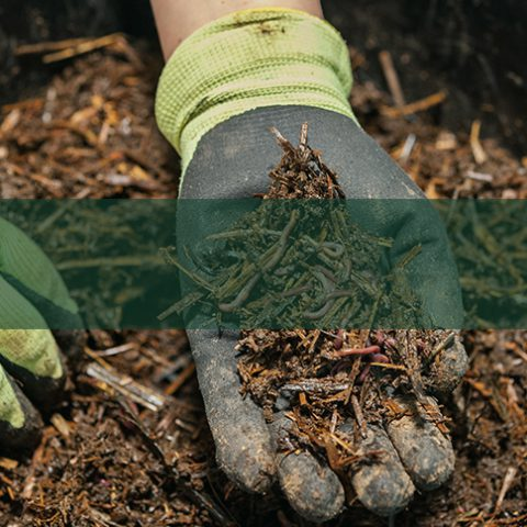 Compost and Mulches - Earnshaws Fencing Centre