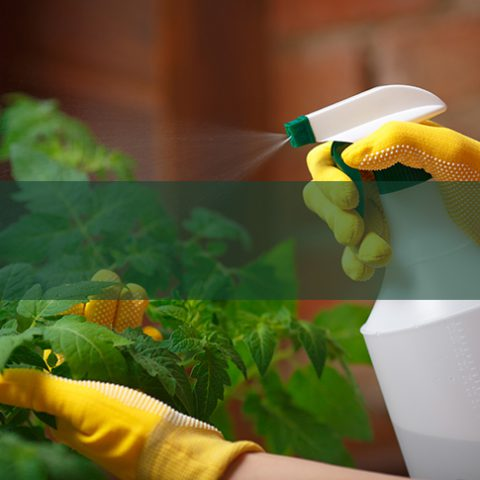 Garden Chemicals - Earnshaws Fencing Centre