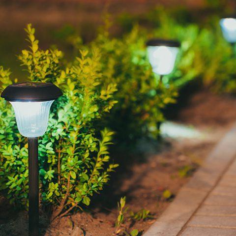garden lighting - Earnshaws Fencing Centre