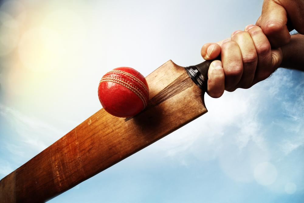 Cricket bat an ball for earnshaws fencing centres