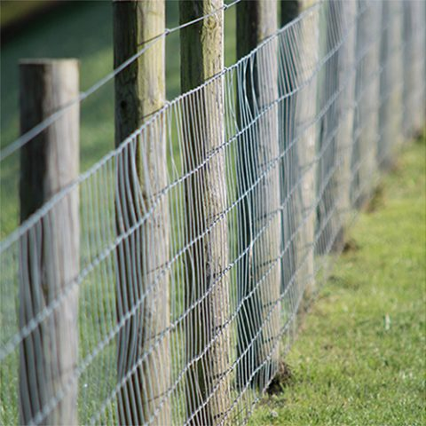 wire fencing at earnshaws fencing centres