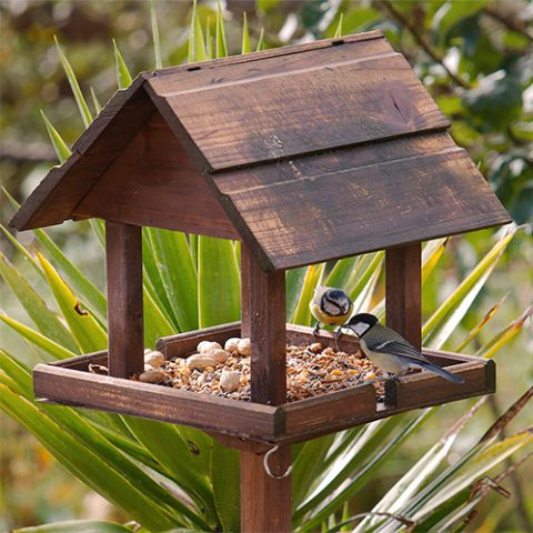 bird tables at earnshaws fencing centres