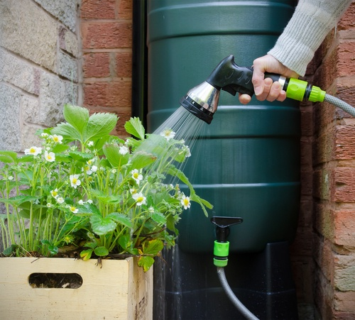 water butts, november gardening tasks