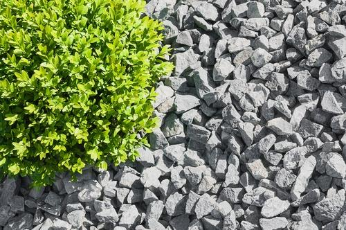 gravel in the garden with earnshaws