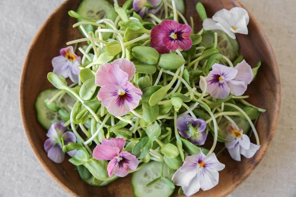 salad with edible flowers earnshaws