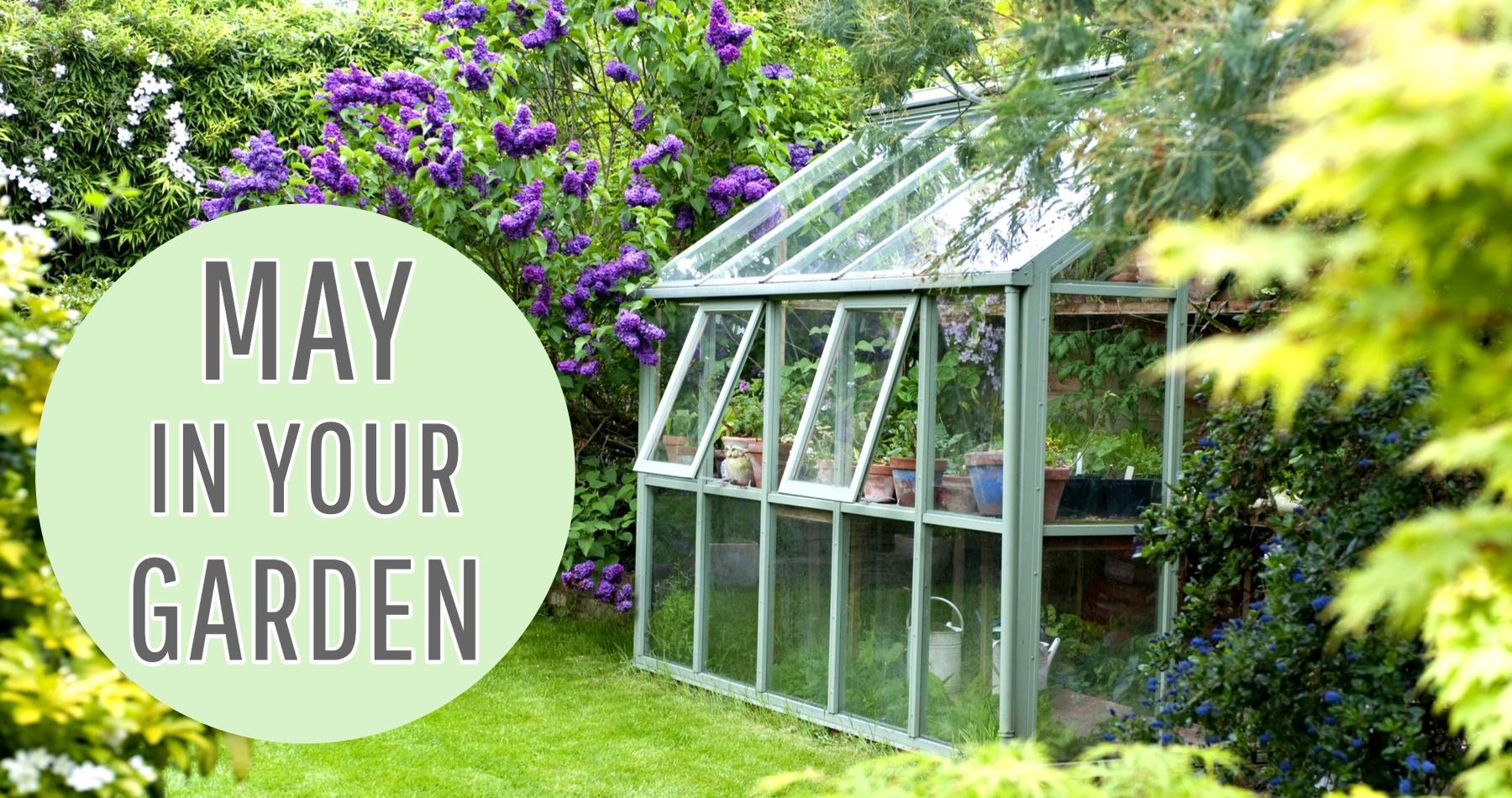 May in Your Garden