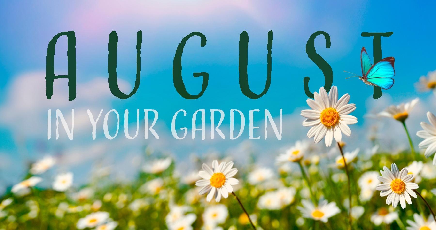 August in Your Garden