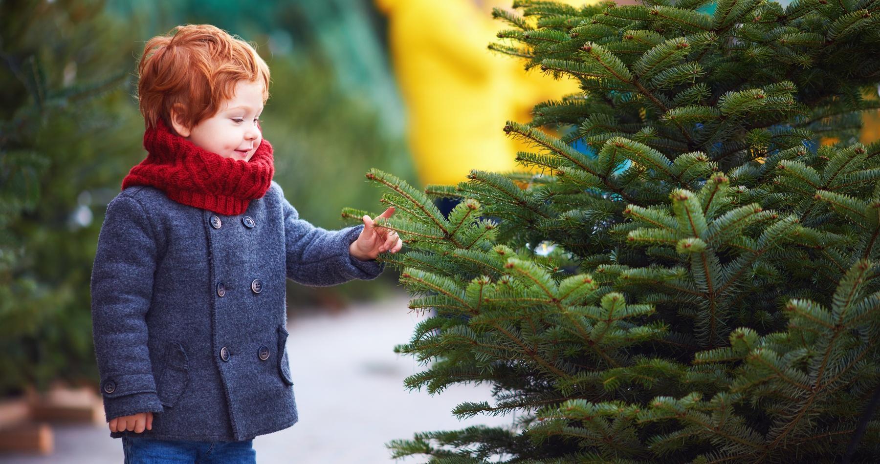 EFC Christmas tree raffle