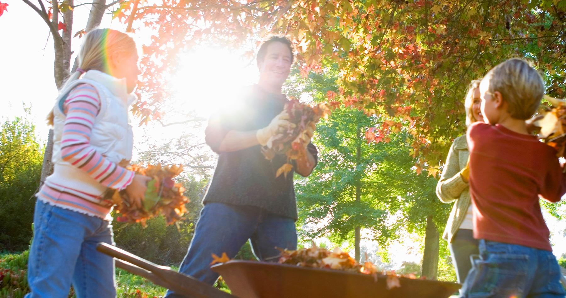 October in Your Garden